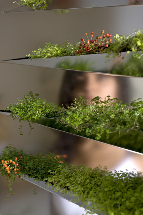 Miroirs de designer -Lemiroir en herbe