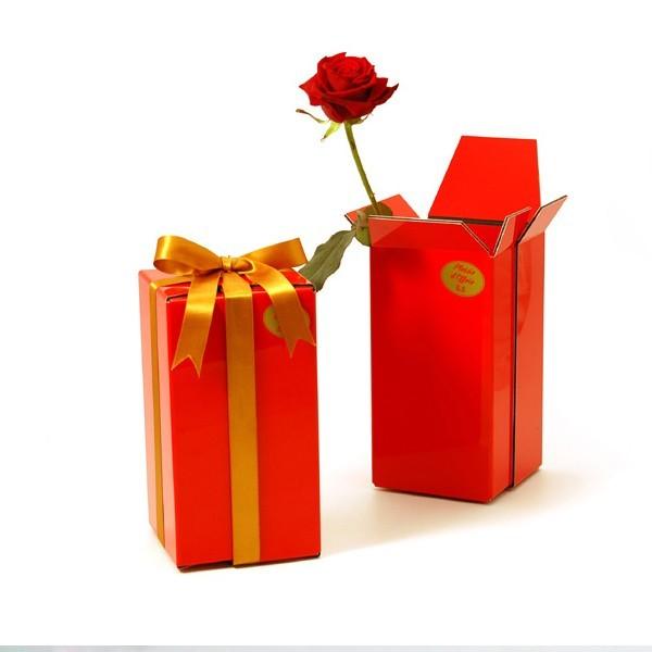 vase paquet-cadeau Plaisir d'offrir 5.5 Designers La Corbeille.