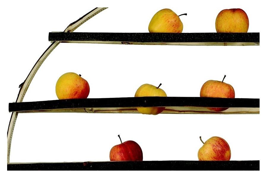 corbeille fruits arbre d 39 hiver by godefroy de virieu. Black Bedroom Furniture Sets. Home Design Ideas