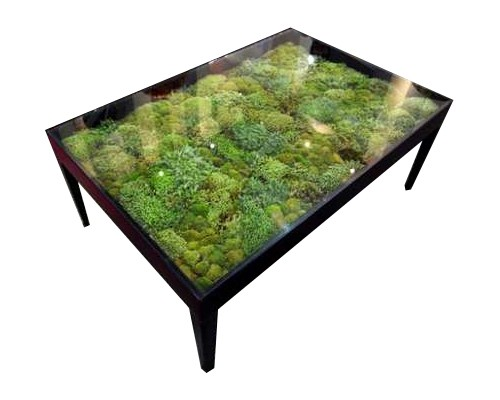 Jardin eden une table basse design tr s nature deco for Decoration jardin d eden