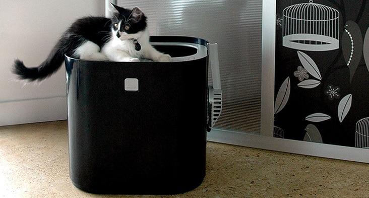 ModKat Litter Box litière design chats