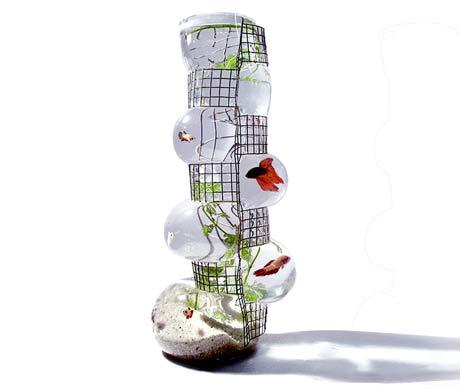 Vase Décoratif -Le vase Aquarius Building by Vanessa Mitrani