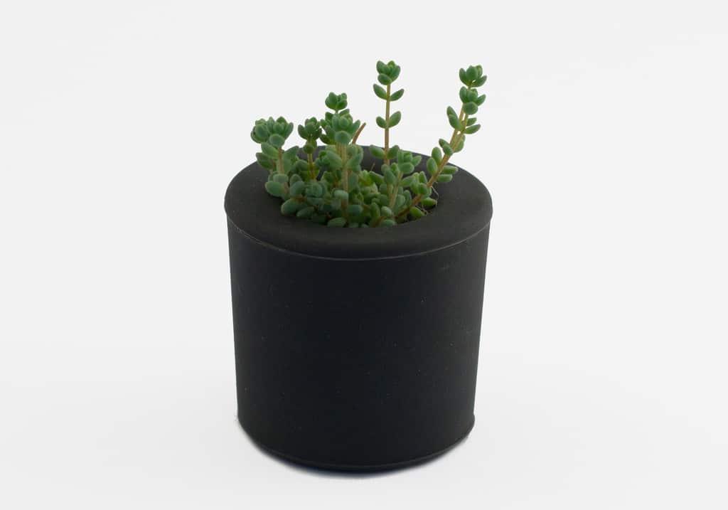 pots Rootcup