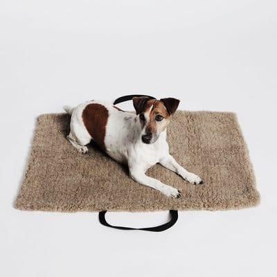 cloud7 le lit de voyage pour chien deco tendency. Black Bedroom Furniture Sets. Home Design Ideas