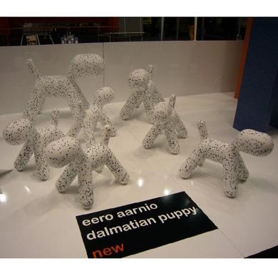 Puppy dalmatien