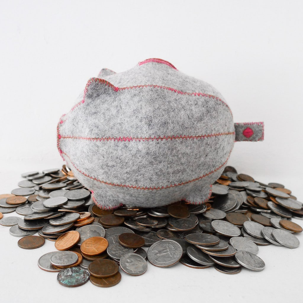 PiggyBank_with_a_coin-1_1024x1024