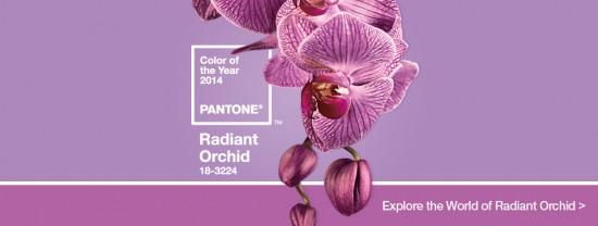 radiant orchid HomeSlider Final 550x208 - radiant_orchid_HomeSlider_Final