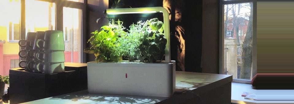 Smart herb garden le jardin d 39 int rieur automatis for Le jardin interieur