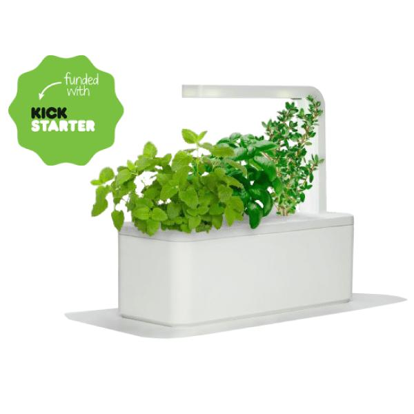 Smart Herb Garden Le Jardin D 39 Int Rieur Automatis