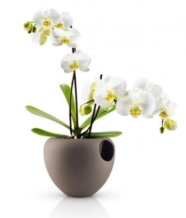 pot à orchidée Eva Solo
