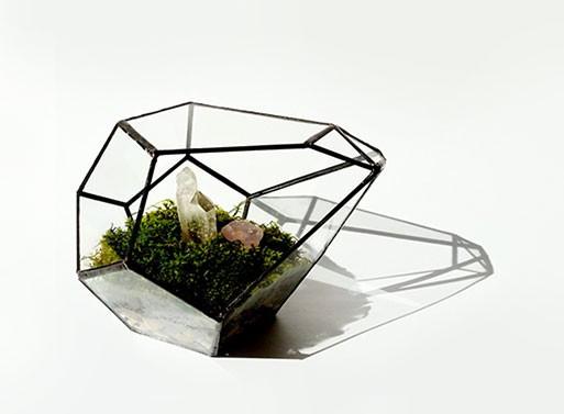 terrariums géométriques