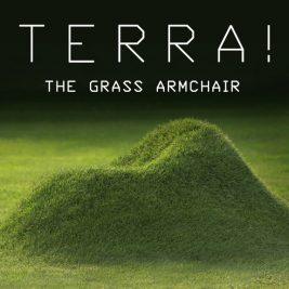 Terra meuble en herbe a faire pousser