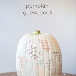 Idées déco pour Halloween conseils pour peindre vos citrouilles 14 267x267 - Idées déco pour Halloween : 25 conseils pour peindre vos citrouilles