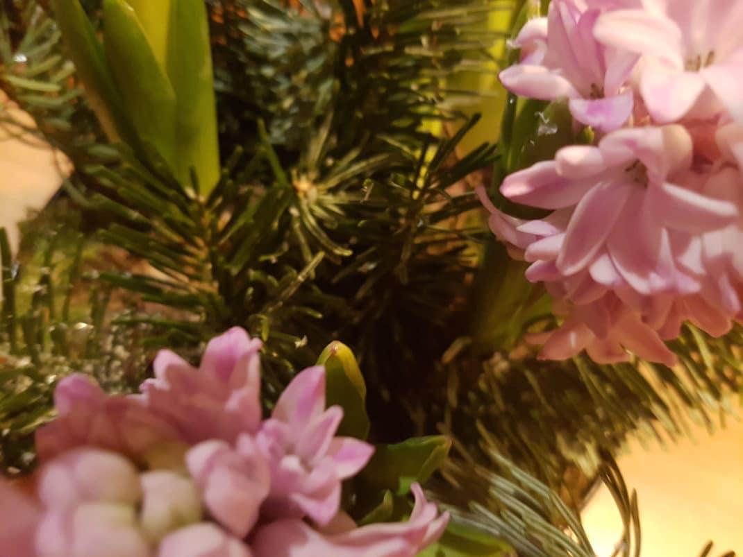 Décoration florale à Noël