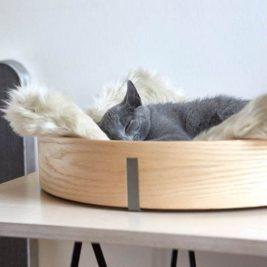 Tuft & Paw redonne ses lettres de noblesse au mobilier pour les chats