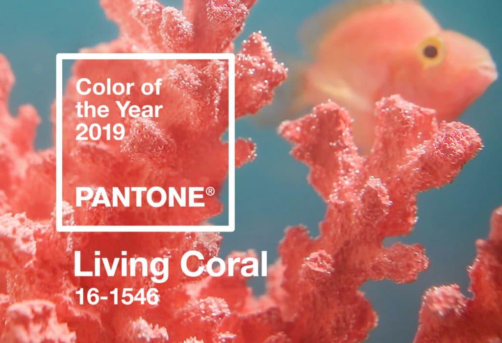 Living Coralpalettes de couleurs