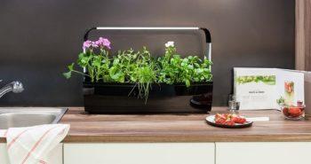 Avis Potagers Tregren Test des potagers dintérieur intelligents 350x185 - 5 porte couteaux à installer dans votre cuisine