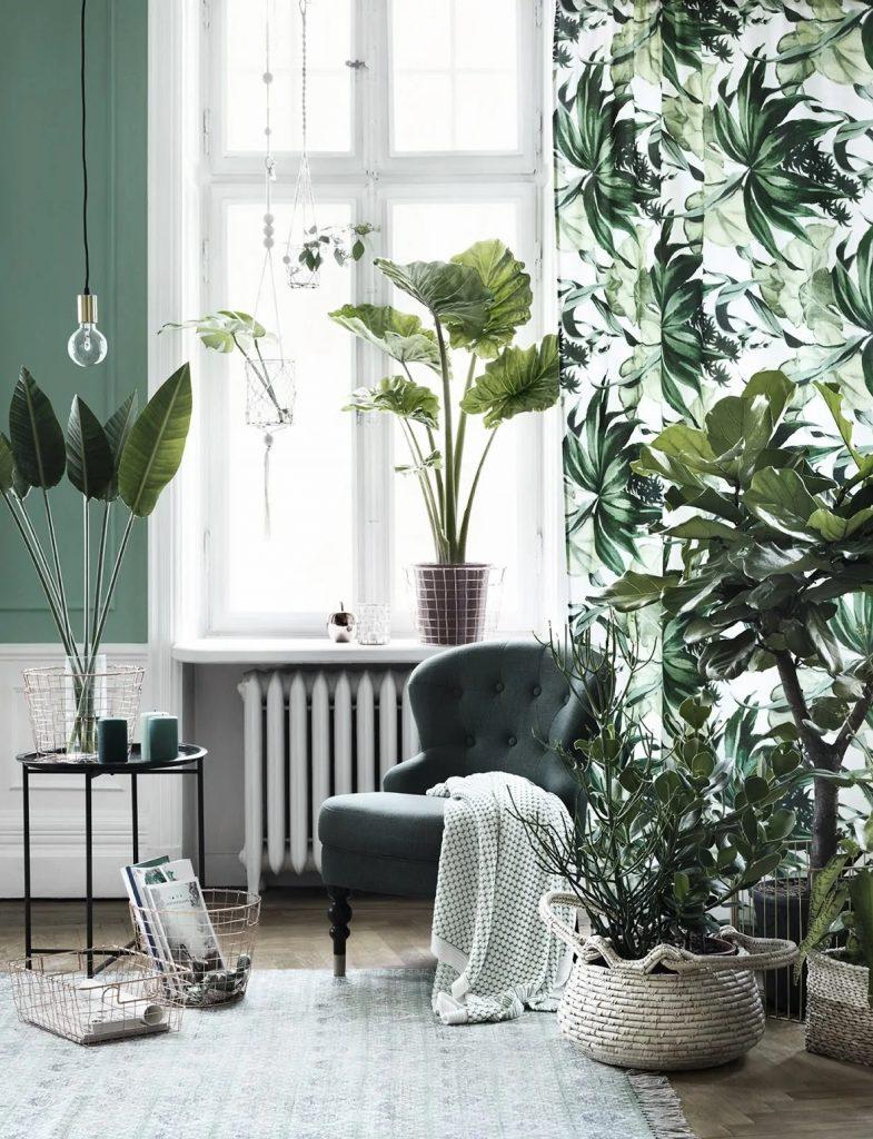 Pour aménager de petits espaces, déplacez vos plantes