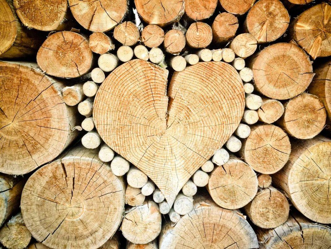 Bien Choisir Granulés De Bois poêle à bois vs poêle à granulés : lequel choisir pour votre